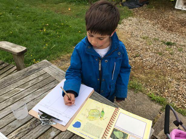 flexi schooling in Devon